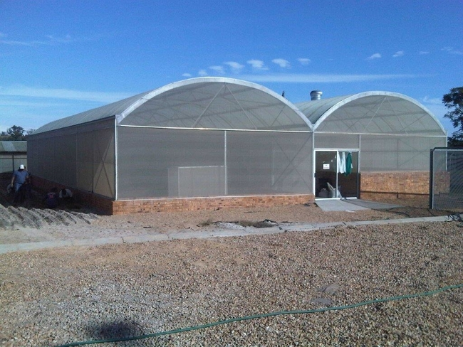 8m Multispan insect proof greenhouse with Polycarb roof.
